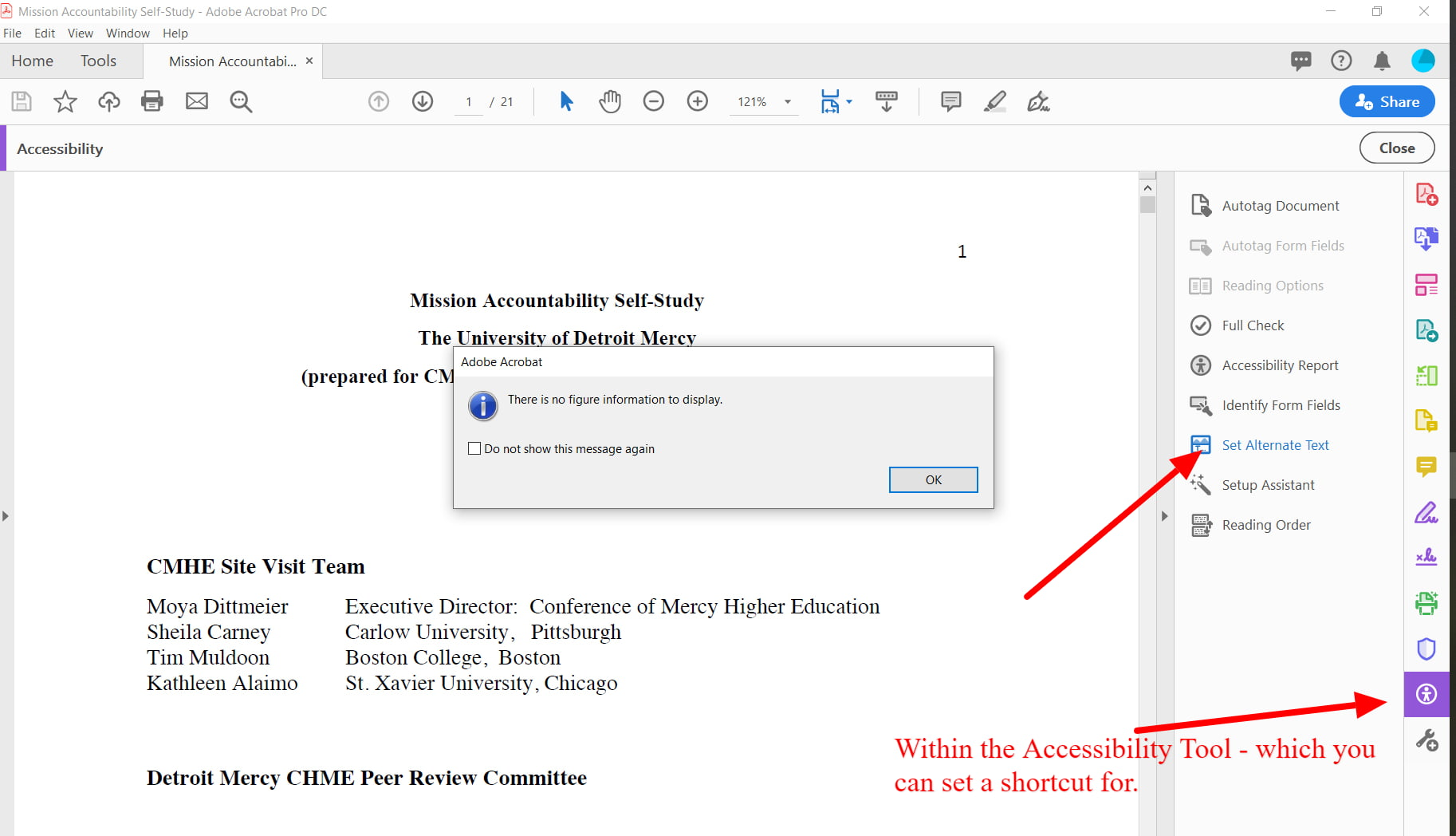 in Accessibility Tool mneu, select alt text and cycle through all images in the set alt text window and add descriptive text